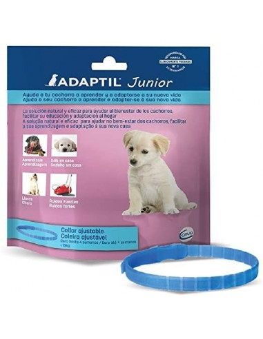adaptil-collar-junior