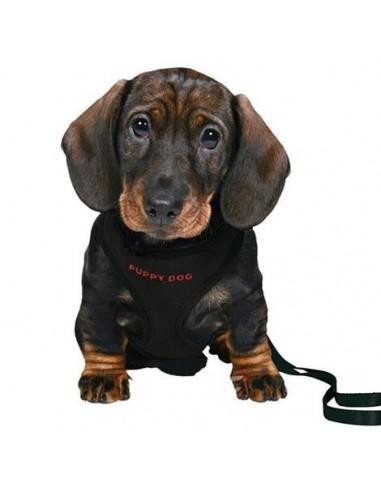 trx-set-cachorros-acolchado-26-34-cm