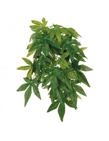 trx-planta-seda-colgante-terrarios-abuti