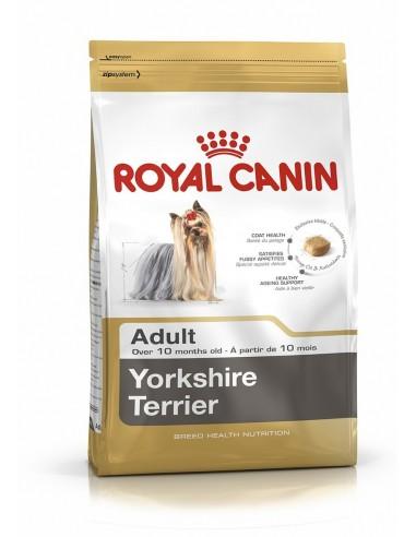 royal-ad-yorkshire-500-gr