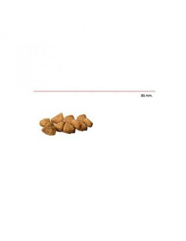 advance-cat-hairball-pavo-400-gr