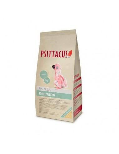 psittacus-papilla-neonatal-1-kg