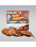 jbl-nanocatappa-10u
