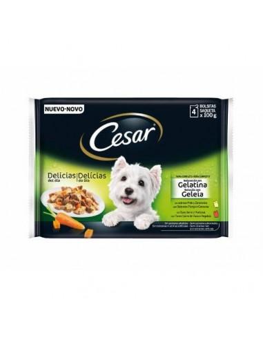 cesar-pouch-multipack-gelatina-4100-gr