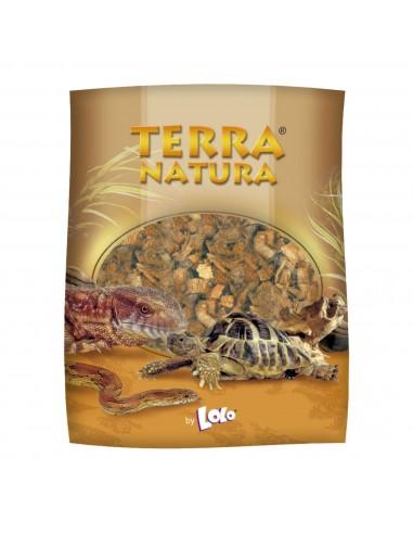 ica-lolo-coco-medio-para-terrarios-4-l