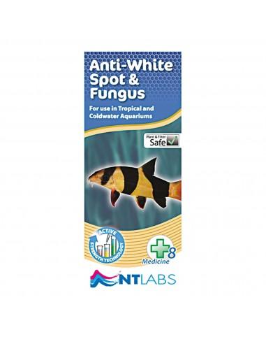 ica-nt-anti-white-spot-fungus