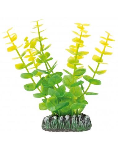 ica-planta-bacopa-amarilla-85-cm