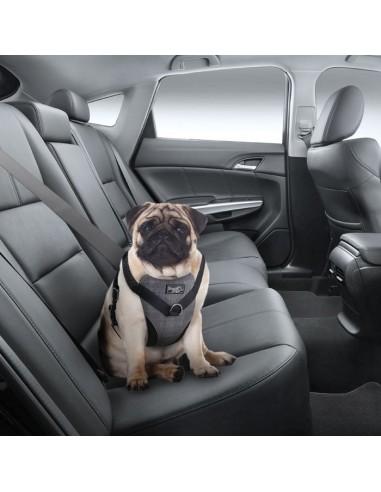 afp-travel-dog-arnes-coche-l