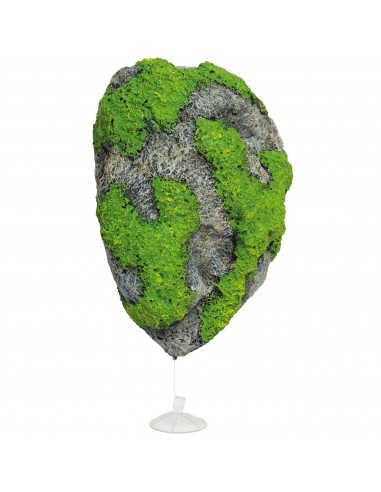 ica-roca-flotante-1812575-cm