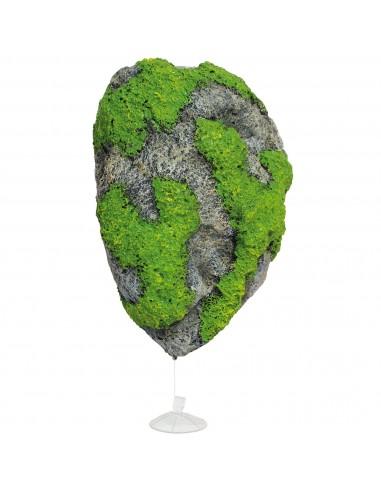 ica-roca-flotante-13597-cm
