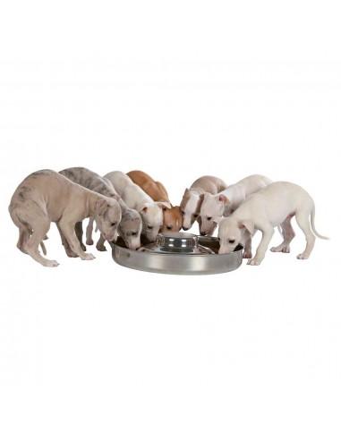 trx-comedero-cachorros-40-l-38-cm