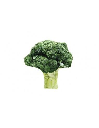 fb-matatabi-brocoli